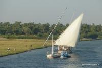 Eine Dhau auf dem Nil