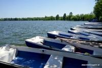 Boot am Herastrau See