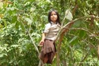 ein Mädchen sitzt auf einem Baum