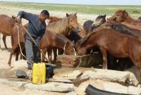 Ein Brunnen in der Mongolei