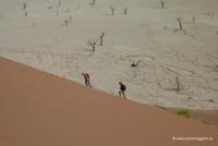 Dünenbesteigung in Namibia