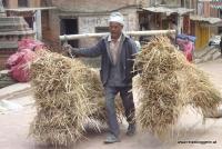 Ein Arbeiter auf Nepals Straßen