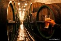 Der Keller in der Urquell Brauerei in Pilsen