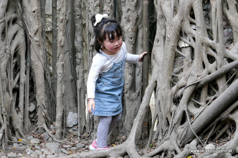 Anping Tree House in Tainan