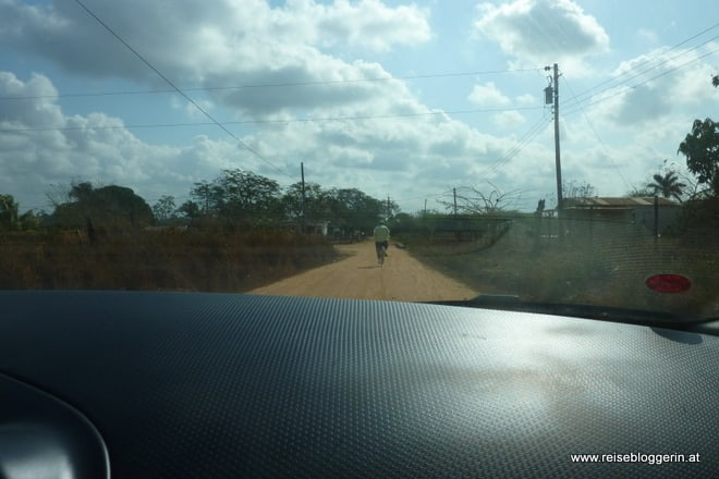 Ein Jinetero auf dem Fahrrad fährt vor unserem Auto zur Tabakfarm