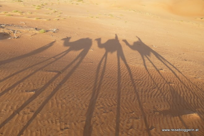 Die Wüste im Oman