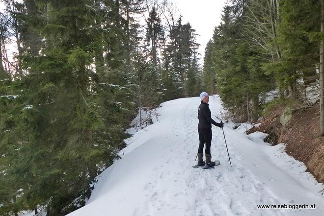 Schneeschuhwandern im Böhmerwald