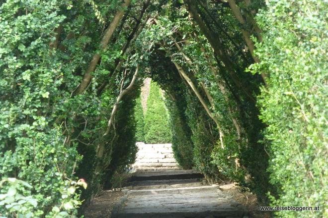 Botanischer Garten an der Schwarzmeerküste