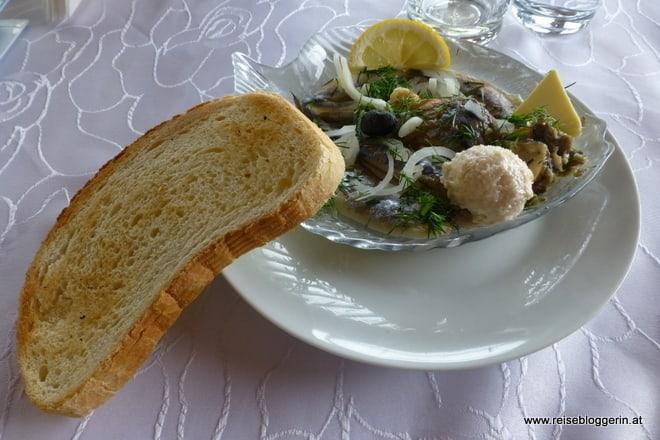 Muscheln in einer Muschelfarm in Bulgarien