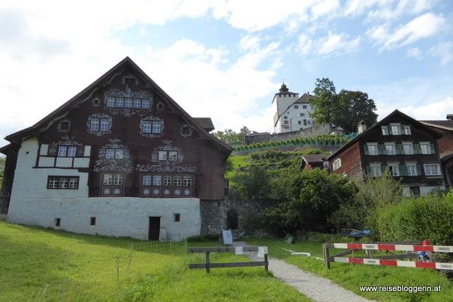 Das Schlangenhaus in Werdenberg