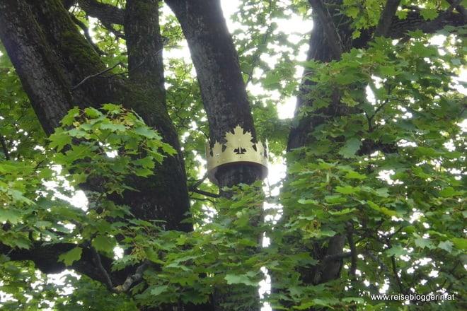 eine goldene Krone versteckt in einem Baum im Fontanapark