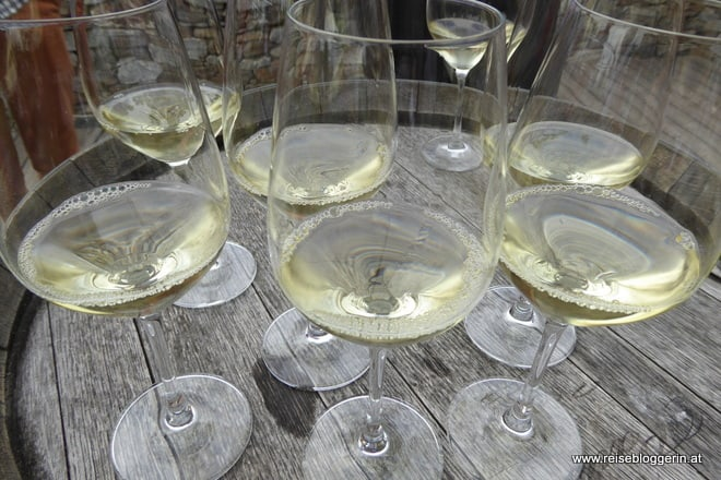 Weinverkostung Wachau