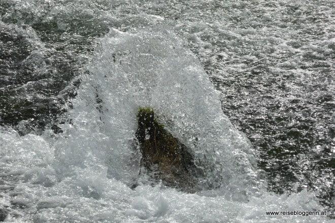 Das Wasser vom Rhein
