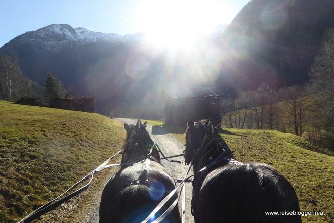 Pferdekutsche im Großarltal