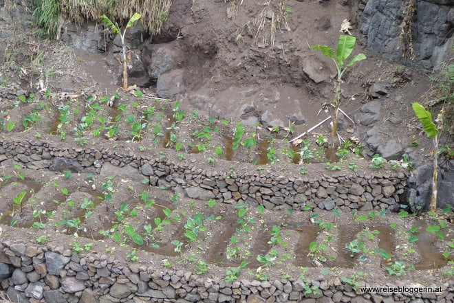 Bewässerungskanäle
