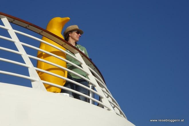 Pinguin Mein Schiff