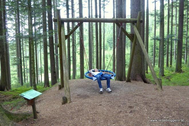 Wald der Sinne