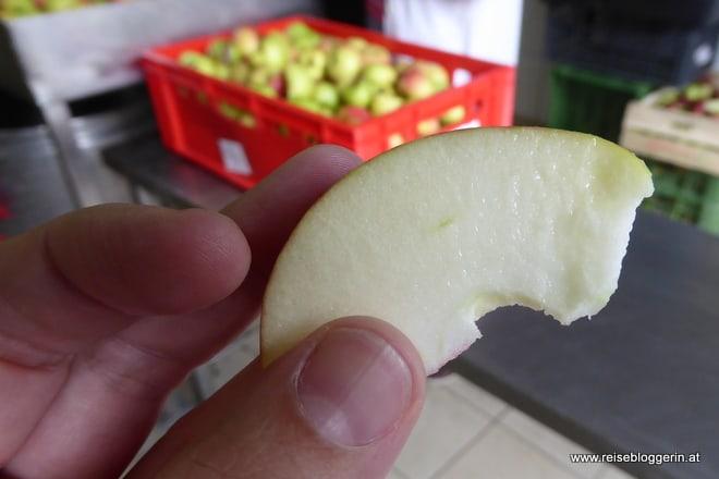 Aus diesem Apfel wird Apfelsaft