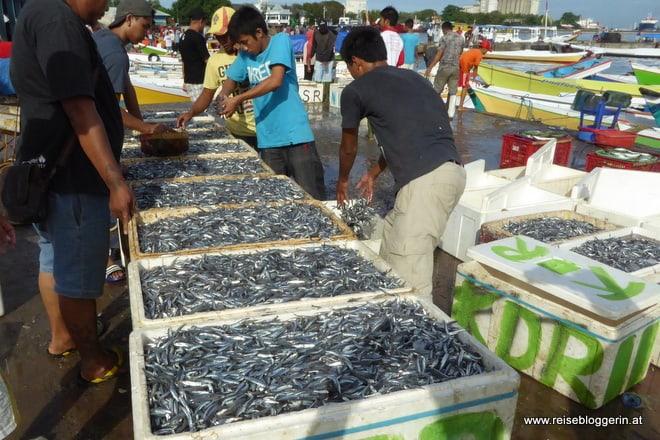 Fischmarkt in Sulawesi