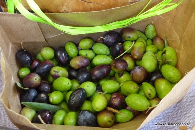 Oliven Gustatus