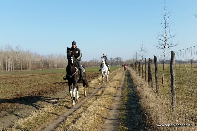 Zu Pferd unterwegs im Burgenland