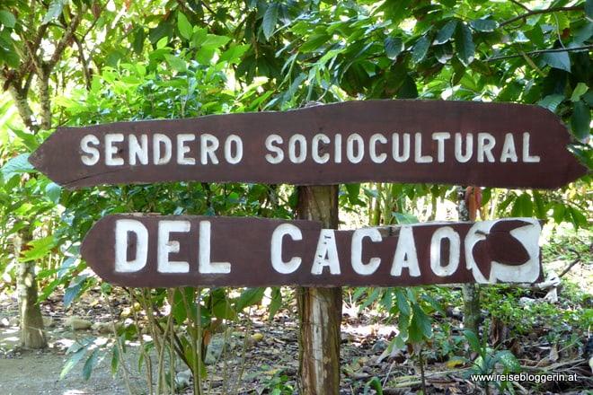 Kakaolehrpfad