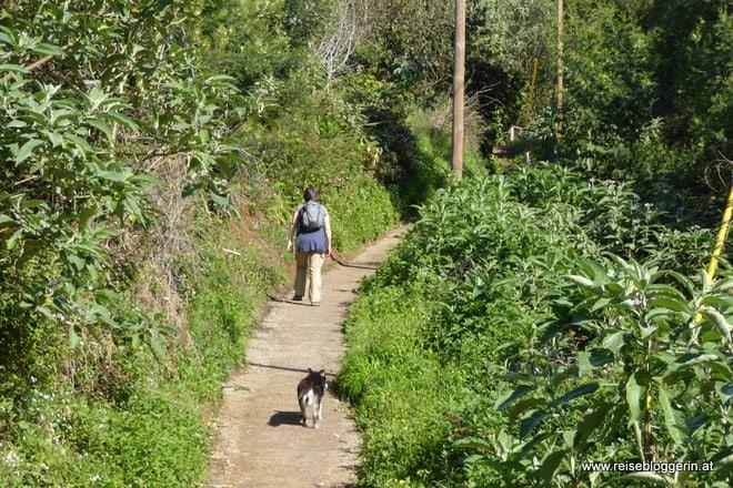 Levada Wanderung auf Madeira