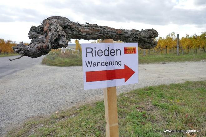 Riedenwanderung in Horitschon