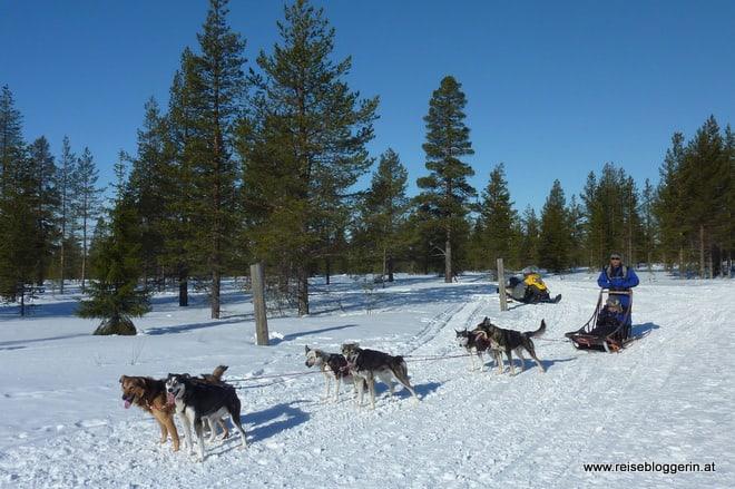 Winter Abenteuer in Finnland
