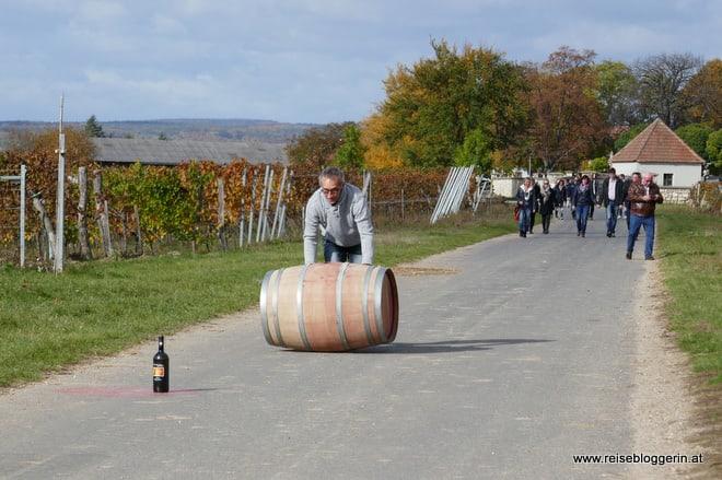 Der Winzer Alfred Moritz beim Weinfassl rollen
