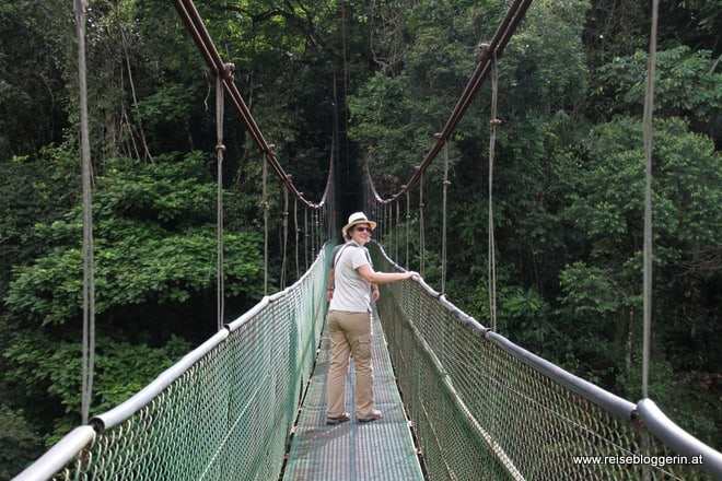 Hängebrücke im Tirimbina Resort