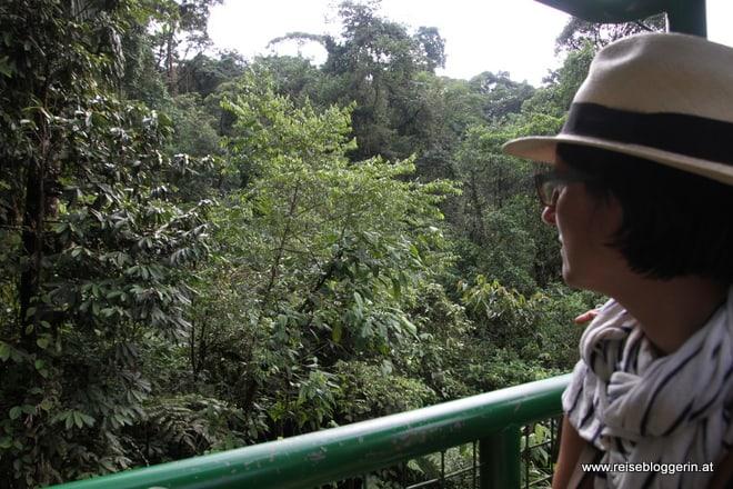 Die Reisebloggerin schwebt in der Seilbahn durch den Regenwald