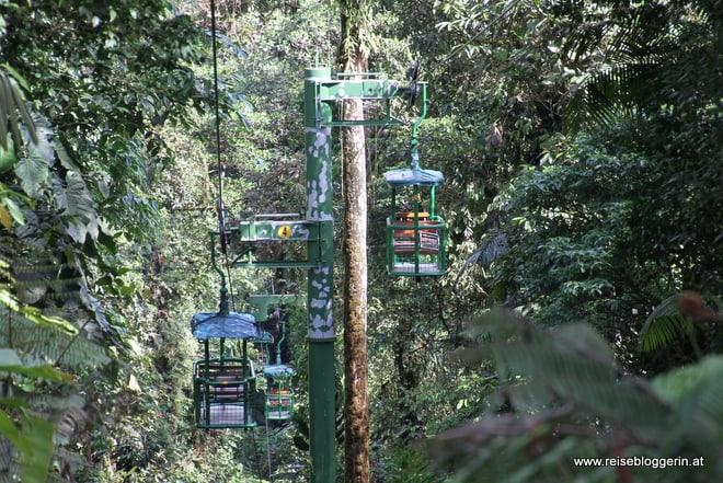 mit der Seilbahn durch den Regenwald in Costa Rica
