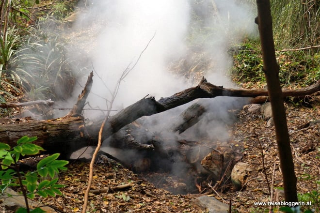 Fumerolen im Nationalpark Rincón de la Vieja