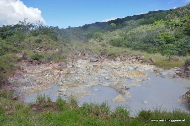 Es riecht nach Schwefel im Nationalpark Rincón de la Vieja