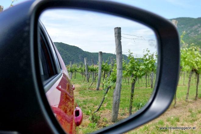 Die Wachau ist ein bekanntes Weinbaugebiet