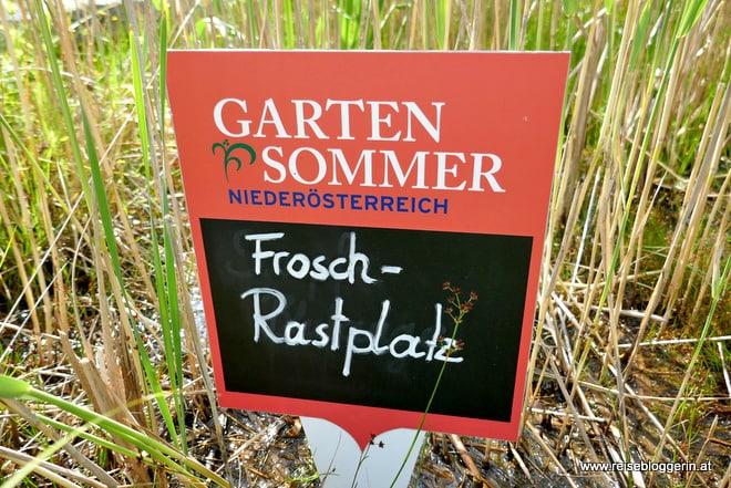 Frosch Rastplatz im UnterWasserReich in Schrems