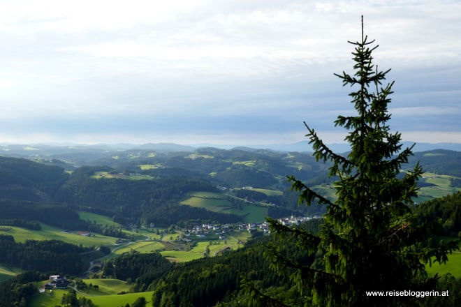 Ausblick vom Gipfelkreuz Königswiesen