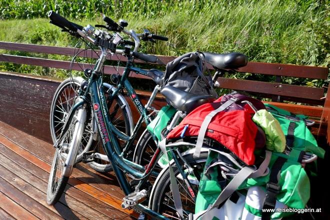 Auf der Fahrradfähre am Donauradweg