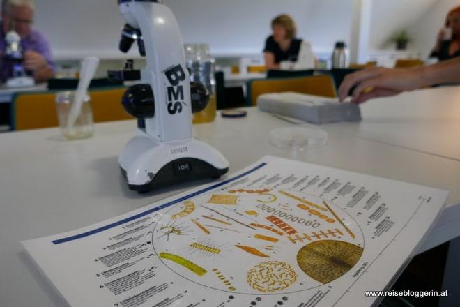 Mikroskopierkurs im Nationalparkhaus Wangerland