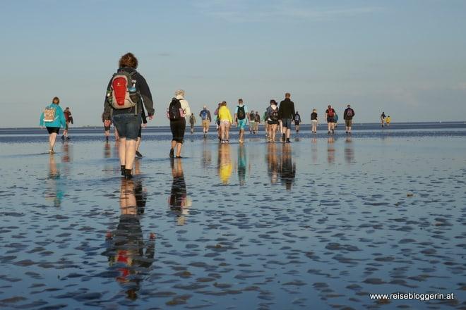 Eine Wattwanderung an der Nordsee