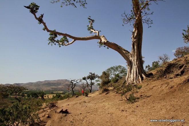 Wanderung zu den Wasserfällen am Blauen Nil