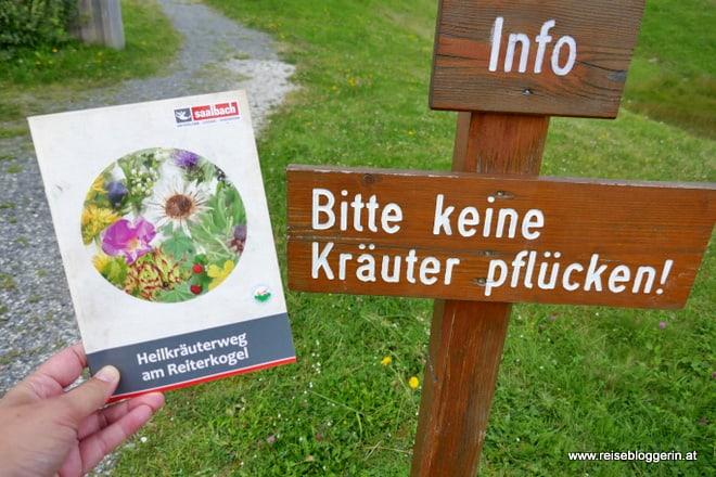 Heilkräuterweg in Saalbach Hinterglemm