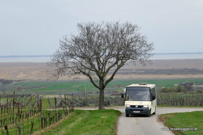 Der Gmoabus in Purbach