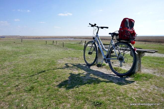 Radfahren am Neusiedler See