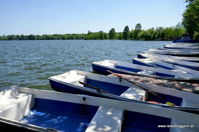 Herastrau See in Bukarest