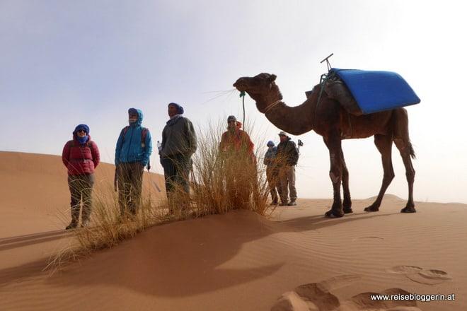 Eine Pause beim Wüstenwandern
