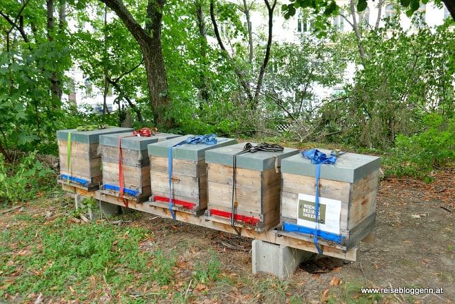 Die Bienenstöcke im Liechtensteinpark in Wien