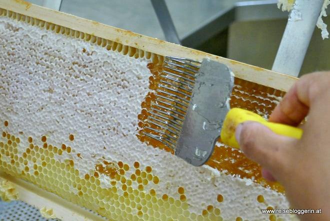 Honig wird entdeckelt