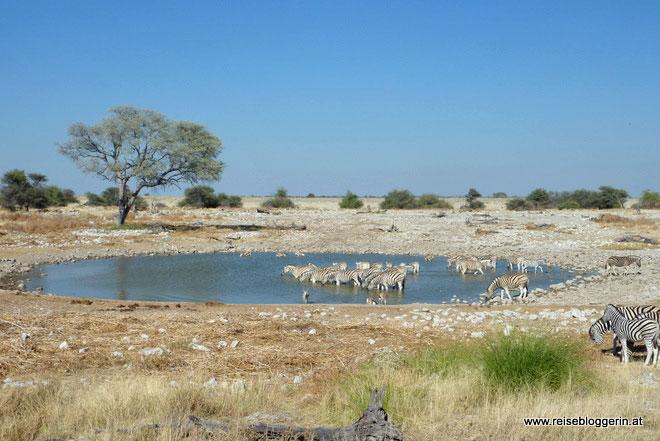 Fernreise Namibia